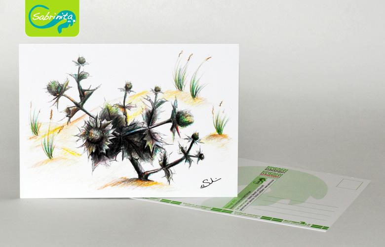 Postkarte A6 – Kunstdruck: Distel im Sand