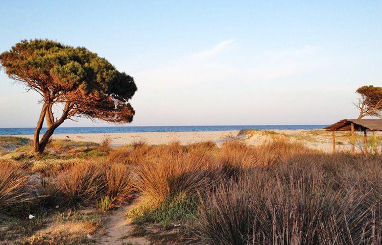 Abendstimmung am Strand von La Caletta Sardinien